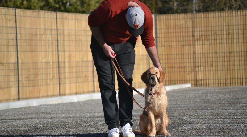 La Cape : une association qui a du chien